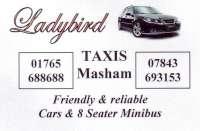 Ladybird leaflet-200
