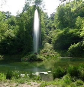 Hackfall Woods - The Fountain