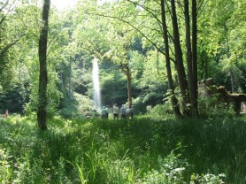 Hackfall Woods - View of Fountain