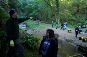 Hackfall Woods - Wolsley Volunteers