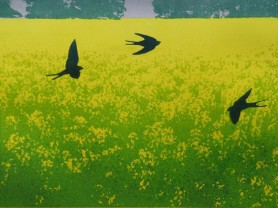 Hester Cox. Flight of swallows nr Fearby