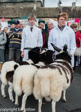 Masham Sheep Fair - by Bill Tetlow (2)