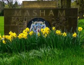 Masham Sign & Daffodils.  K Holland