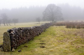 Masham Wall by Mike Bentley