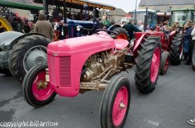 Tractor - Steam Rally by Bill Tetlow