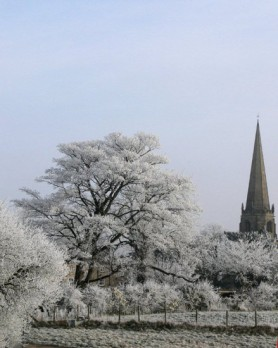 Winter Tress & St Marys Church